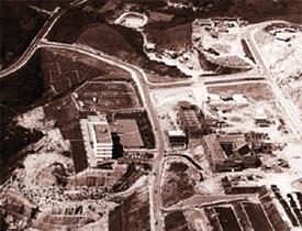 第一个十年 | 中文大学:五十年光影纪事