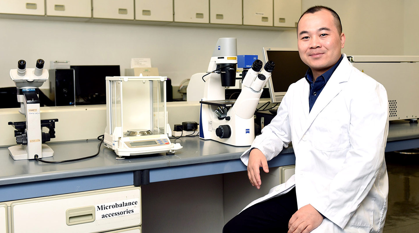 Professor Luo is also studying Roseobacter bacteria, which generate dimethylsulfide that provokes a cooling effect that combats climate warming