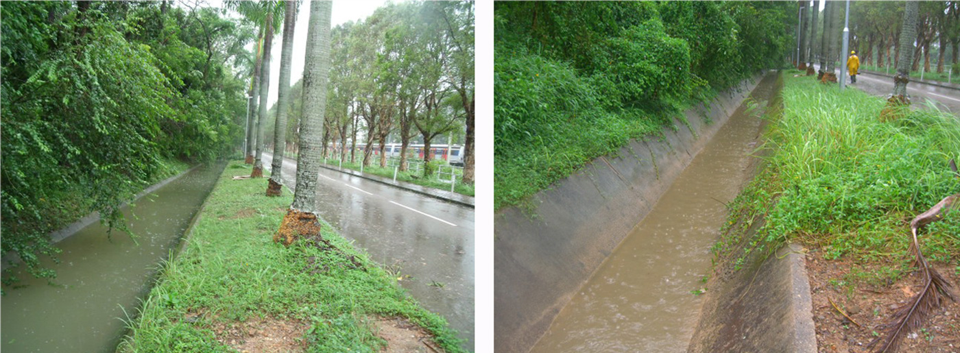 Typhoon Pakhar brought more heavy rains to Hong Kong than typhoon Hato. The photos above depict how the open catchwaters direct rainwater away from the campus to prevent flooding