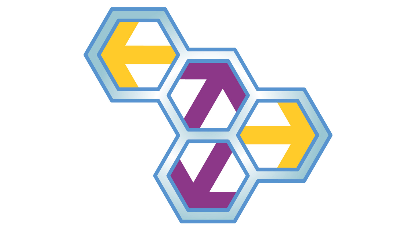 Homage to Hexagons: Centre for Promoting Science Education