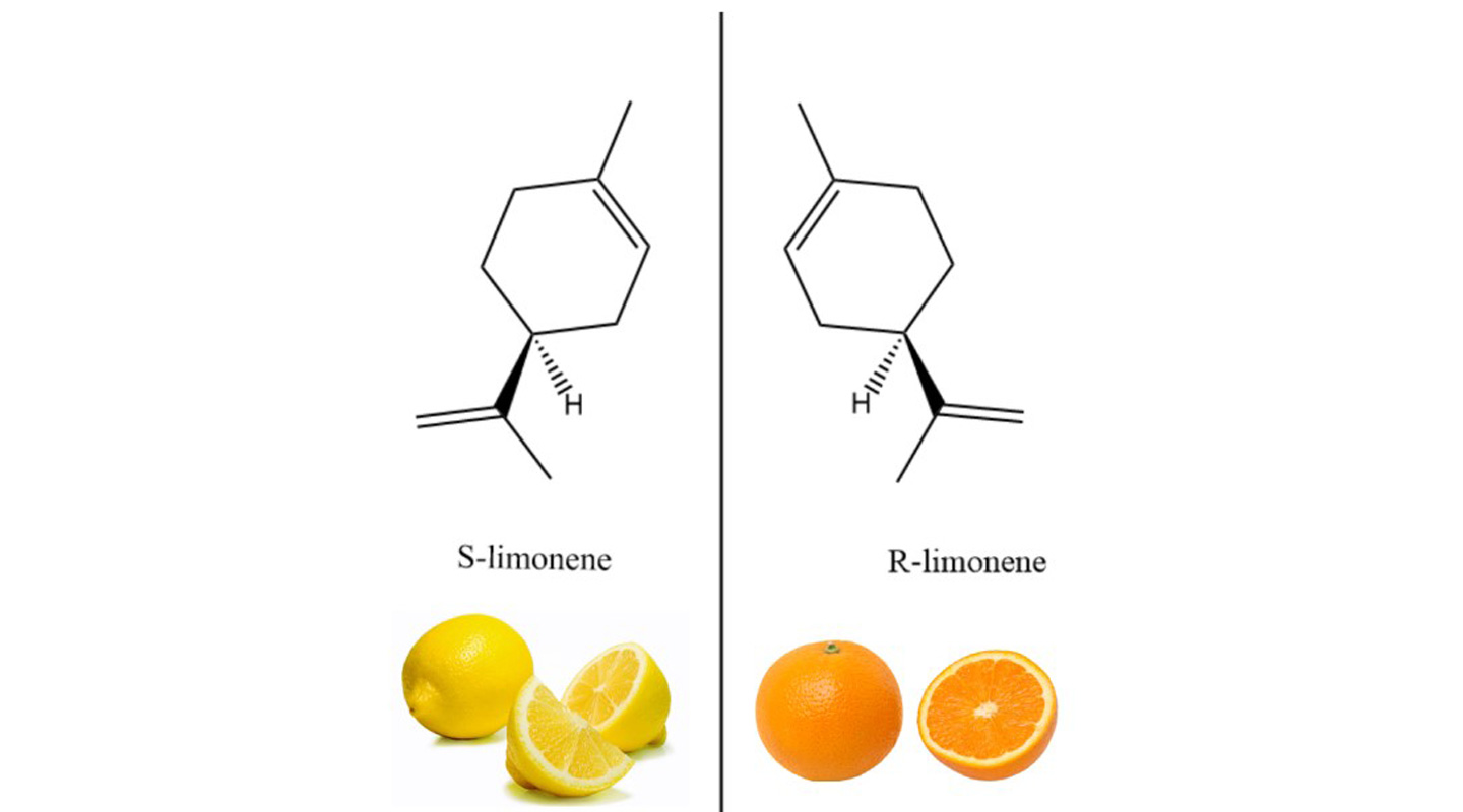Figure 1: the compounds S-limonene and R-limonene