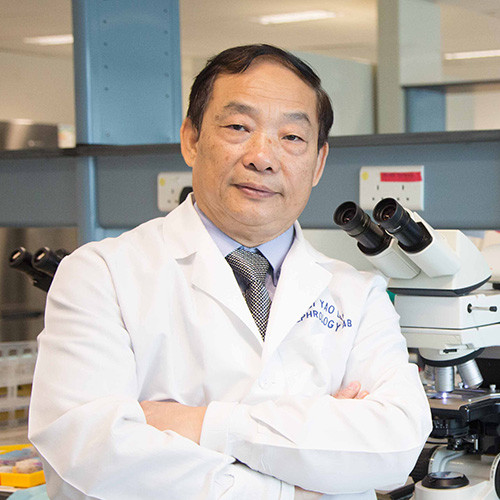 New Hope in Organ Scarring Prevention: CUHK scholar discovered the main pathway and the culprit