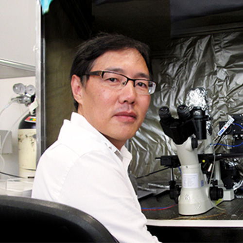Killing Cancer Cells from the Inside Out: CUHK physiologist takes aim at cancer cell's defence