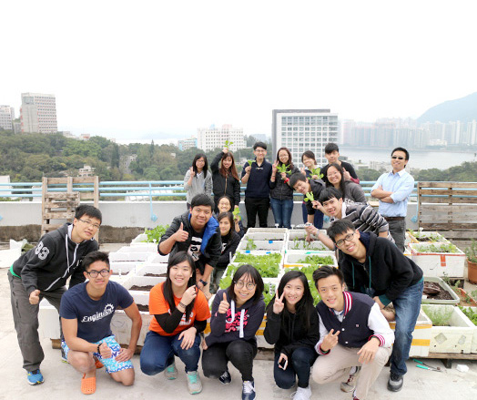 <em>Harvest at the Hui Yeung Shing Building rooftop farm <br>(Source: Office of University General Education)</em>
